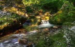 paesaggio, pietre, torrente, muschio, natura