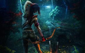 Wettbewerb, Kunst, deviantART, dimadiz, Tomb Raider reborn