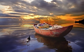 boat, water, sunset, horizon, clouds, bird, in water, reflection