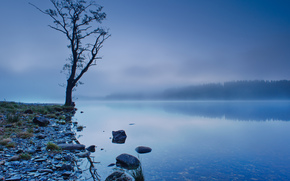 Regno Unito, Scozia, lago, riflessione, costa, albero, alberi, foresta, cielo, nebbia, azzurro