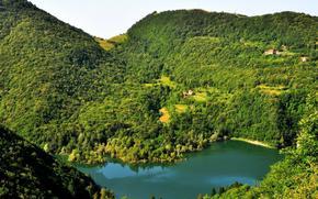 лес, горы, озеро, дома.