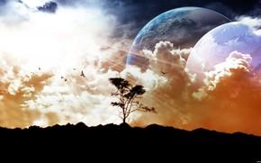 небо, земля, луна
