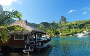 Тропики, Французская Полинезия, Бунгало, Природа