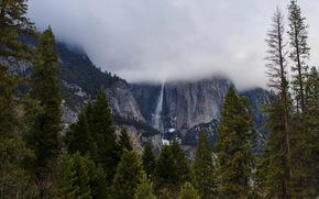 Парки, США, Горы, yosemite, Калифорния, Природа