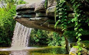 cascata, fogliame, pietre, lago