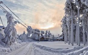 Winter, snow, frost, Yugra