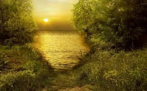 landscape, sea, sky, Trees, leaves, grass, Track