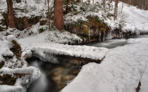 Winter, small river, creek, forest, nature