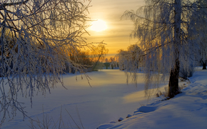 Sweden, Winter, snow, frost, forest, Trees, meadow, Morning, sun, Sunrise