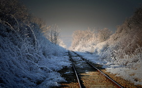 ferrovia, mattina, natura, paesaggio
