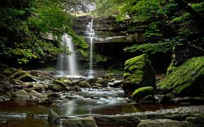 водорад, камни, деревья, пейзаж