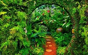 serra, impianto, giardino