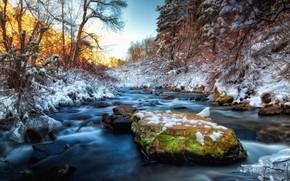 inverno, fiume, alberi, paesaggio