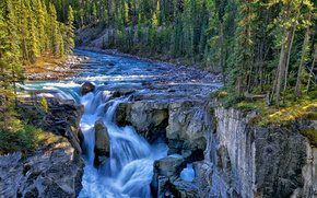 sunwapta falls, sunwapta river, jasper national park, canada, Canada, waterfall, river, rocks, forest, Trees