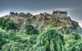 castle, Trees, Plants, landscape