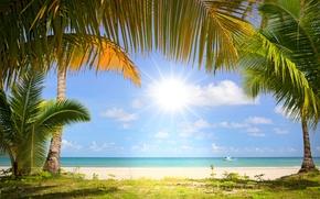 побережье, кораблик, море, пальмы