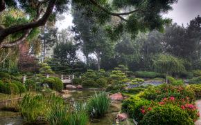 giardino, Stati Uniti d'America, stagno, paesaggio, earl ustioni miller, giapponese, California Design