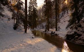 Winter, small river, forest, landscape