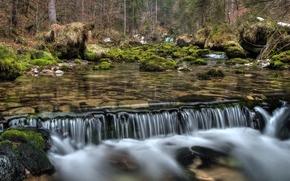 лес, река, водопад, природа