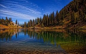 lago, Hills, Los rboles, bosque, Naturaleza