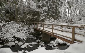 Winter, river, bridge, Trees, landscape