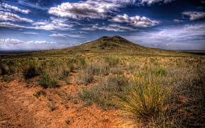 desierto, vegetacin, escaso, volcn. sueo