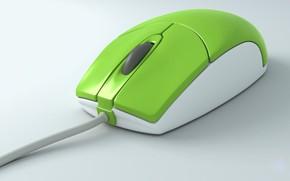 мышь, компьютер, зеленая