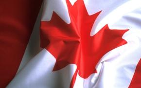 флаг, лист, канада