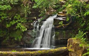 лес, скалы, камни, водопад