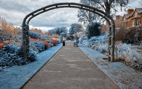 parco, giardino, traccia, negozi, interno
