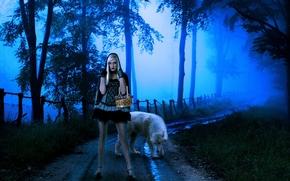nia, lobo, noche, fantasa