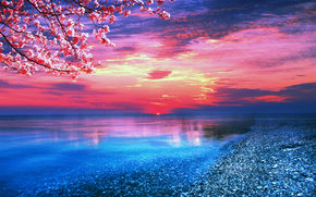 закат, море, берег, ветки деревьев, пейзаж