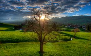 tramonto, campo, torrente, paesaggio