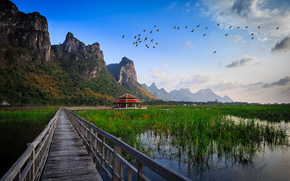 national park, thailand, bridge, water, lake, grass, hut, construction, Mountains, Birds