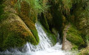 cascade, ruisseau, Nature
