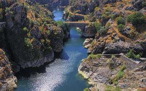 скалы, деревья, мост, река