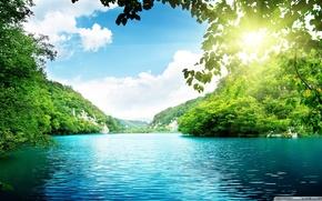 rzeka, soce, czysta woda, las