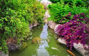 Valencia, castellon'dan, ampio giardino, piscina, pesce