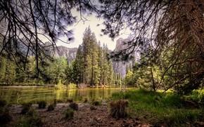 Сша, Калифорния, Парк, Йосемити