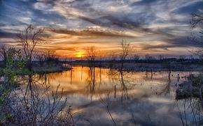 spring, flood, Trees, sunset, sun, clouds