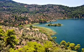 lago, Hills, Los rboles, Naturaleza