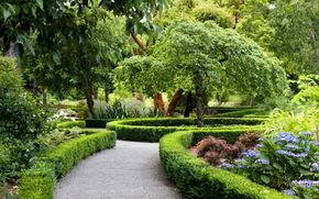 Парк, Новая Зеландия, Ландшафт, christchurch, Кусты, Дизайн, Природа