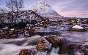 montagna, fiume, ruscello, inverno, neve, albero
