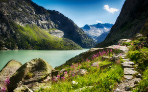 canyon, river, Mountains, Flowers, sunny, stones