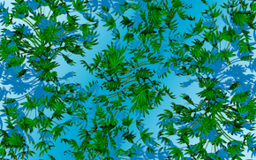 blue background, leaves, texture