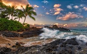 maui, hawaii, Maui, Hawaii, Pacific, rocks, surf, stones, Palms, clouds, tropics, coast