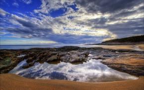 sea, coast, forest, beach, clouds