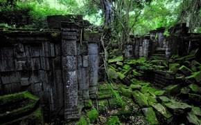 руины, лес, пейзаж