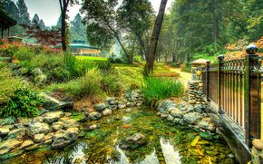 parco, parco in paradiso, ponte, stagno, pietre, paesaggio