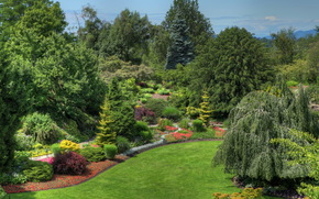 giardino, Canada, paesaggio, Queen Elizabeth, vancouver, design, natura